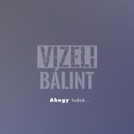 VIZELI-BALINT-fuzet-pages-1